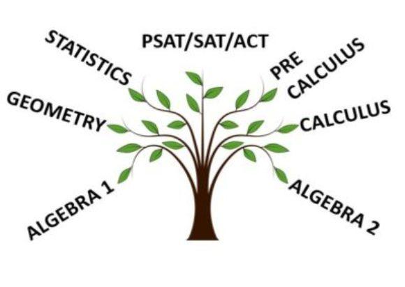 Priyanka's Academy for Maths and Statistics